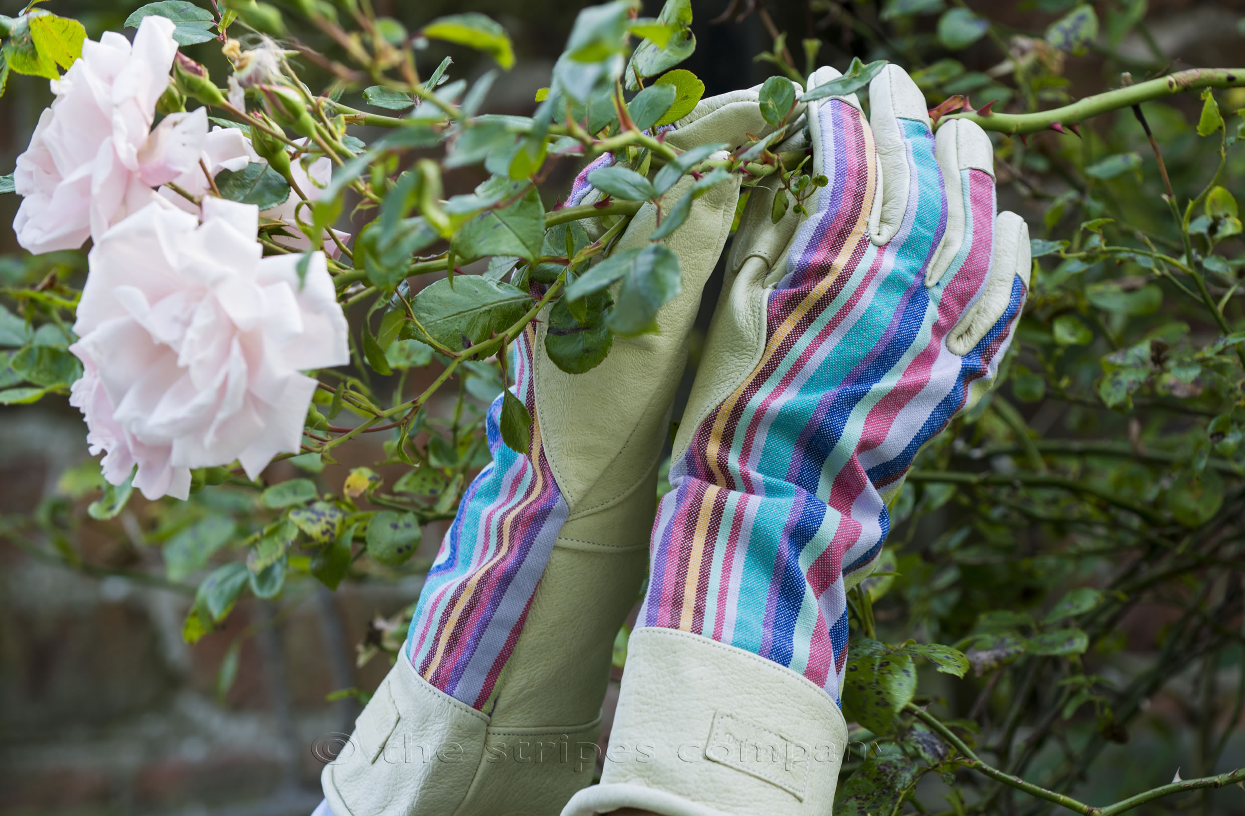 Ladies Striped Gauntlet Garden Gloves - M/L
