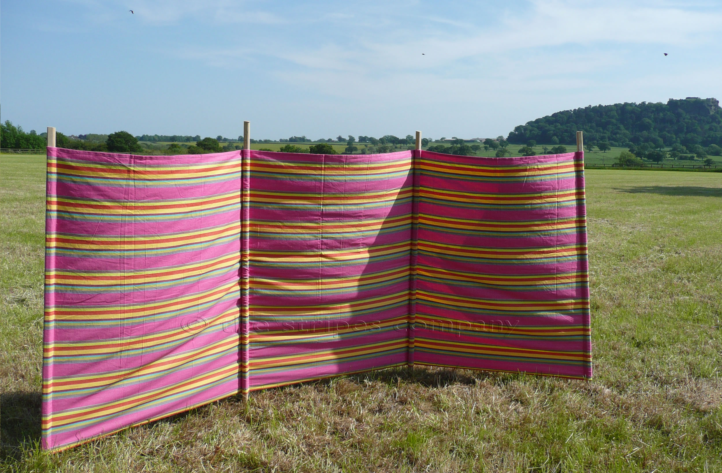 Pink Striped Windbreaks